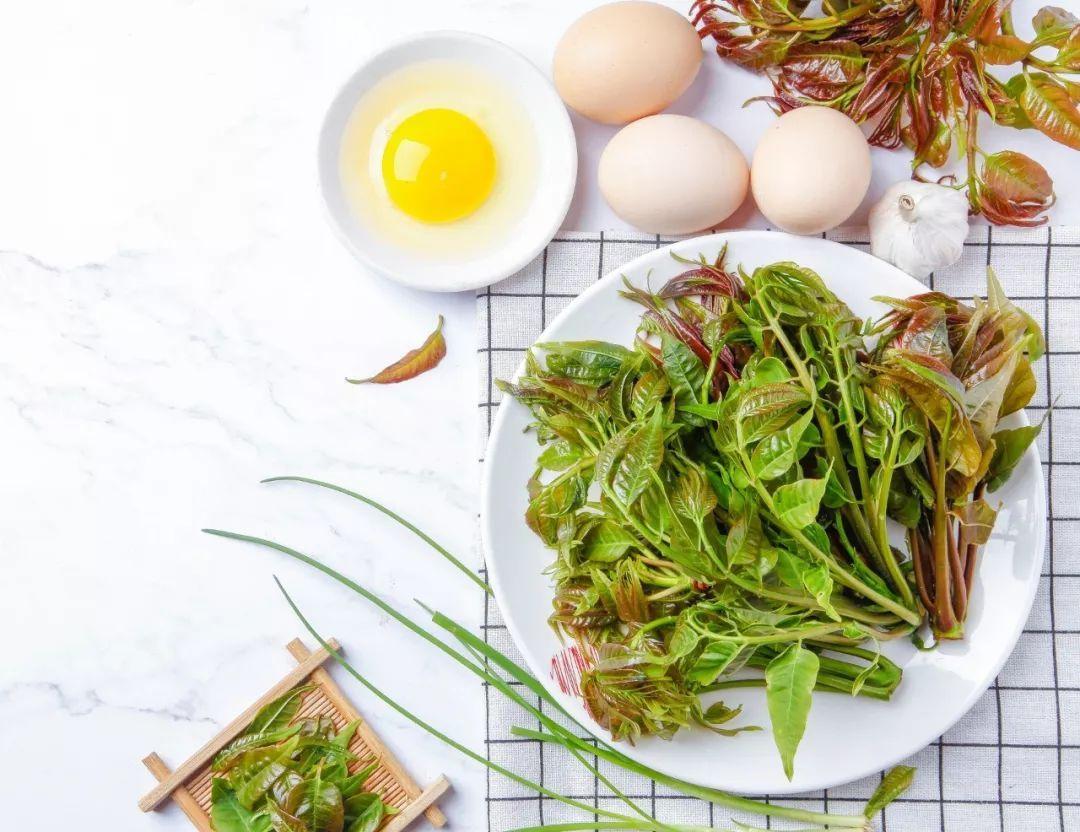 春天必吃香椿,但你了解吃香椿的禁忌吗?
