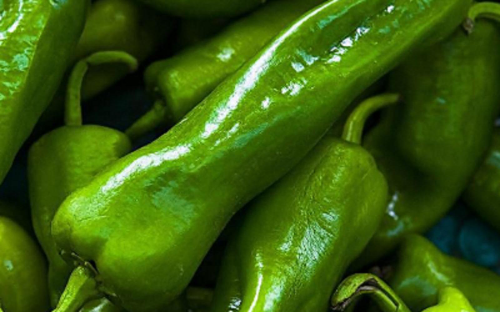 原创             降低血管压力,改善脱发症状,青椒的功效和禁忌有哪些?