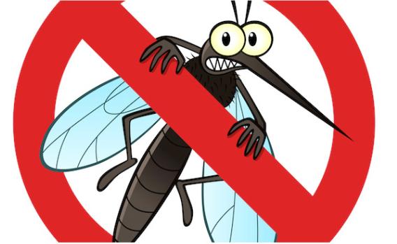 【科普秀】夏季驱蚊大作战 这些防蚊神器你get到了吗?